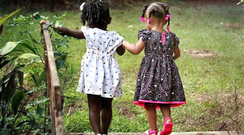 como-es-libra-en-la-amistad